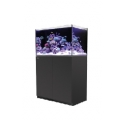 Red Sea Reefer 250 schwarz