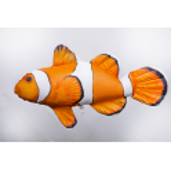 Gaby falscher Clownfisch Mini Kissen, ca. 32 cm lang