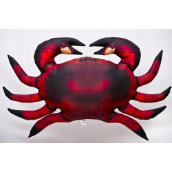 Gaby Krabbe Common, ca. 60 cm lang