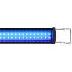 GHL Mitras Slimline 110 Actinic Blue (PL-1715)