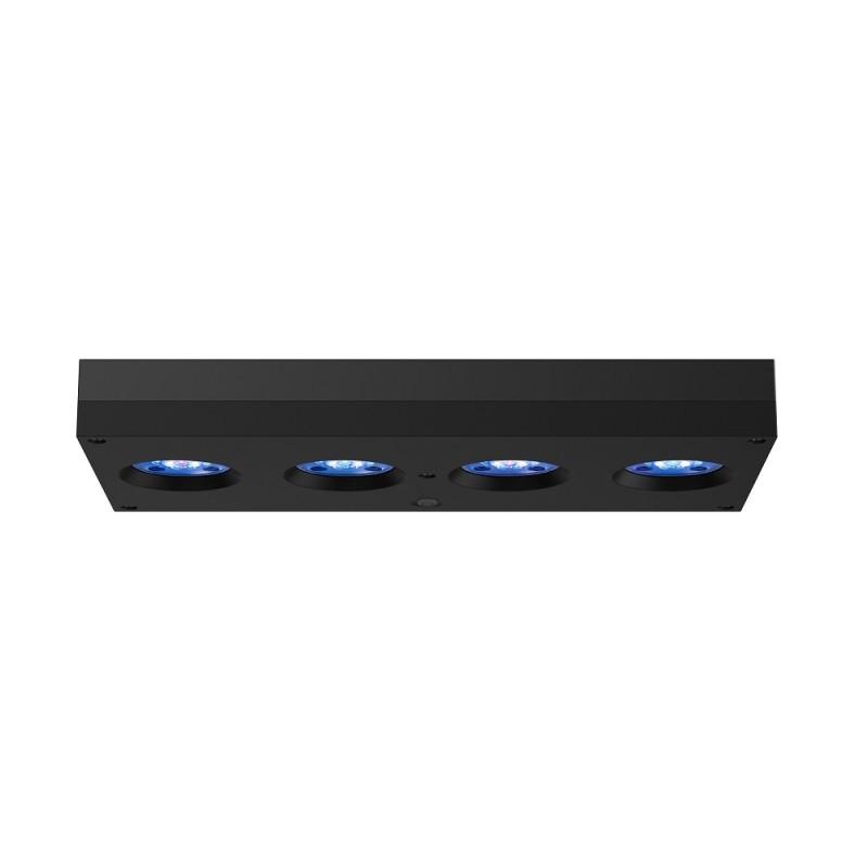 Aqua Illumination Hydra HD 64 LED schwarz